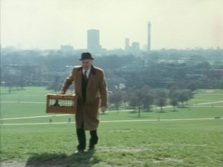 Primrose Hill in 'A Bird In The Hand Is Worth Two In Shepherds Bush'