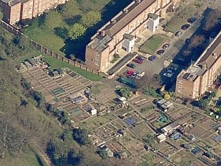 Billings' allotments in 'The Birdman Of Wormwood Scrubs'