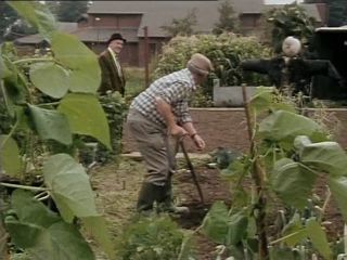Bert's Allotment in 'How To Succeed In Business Without Really Retiring'